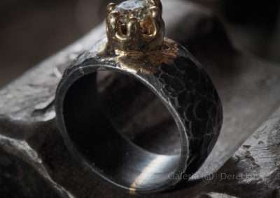 Pierścień FENIKS